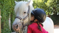 Poney enfant